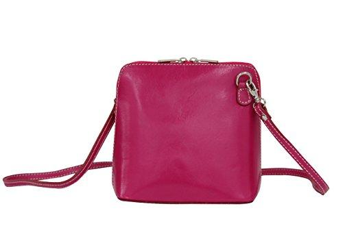 AMBRA Moda Kleine Ledertasche, Umhängetasche, Schultertasche, Discotasche VL508 (Pink)