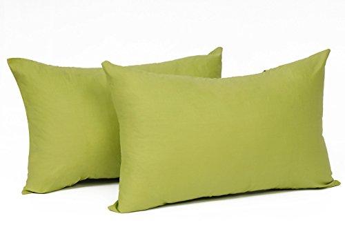 2X Kissenbezug Kissenhülle 100% Baumwolle mit Reissverschluss, 2er Set Sofakissen Dekokissen Kissen Bezug, Kopfkissen Hülle Bezüge Doppelpack, 30x50 cm, Grün ()