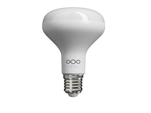 Reos Lite E2713W LED Smart Bulb (1100Lumens)