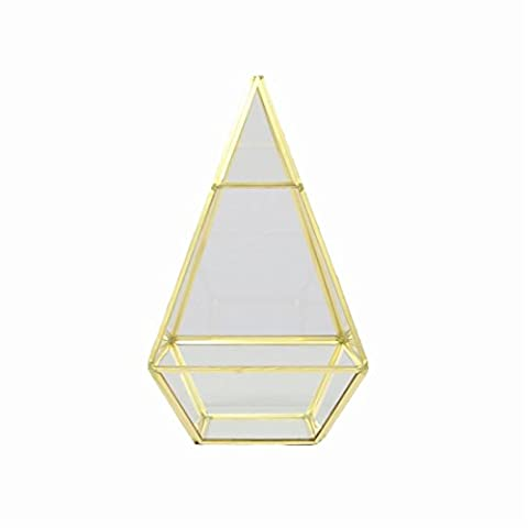 Nordic Style Geometric Glass Flower Room Immortal Flower Micro - Landscape Ornaments Living Room Cafe Glass Cover -