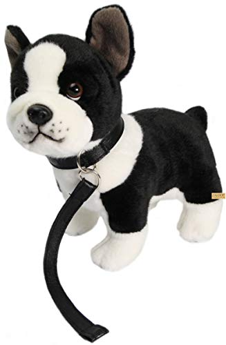 Bulldogge französische Plüschtier Kuscheltier Stofftier Plüsch von Zaloop® (Bulldogge 184) (Stofftier Französische Bulldogge)