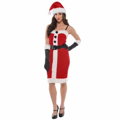 Beautiful Adult Woman's Christmas Jolly Holly Santa Fancy Dress Costume In Small Size (8-10) (Dress Christmas Womens Fancy Ideen)
