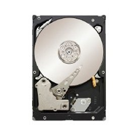 Seagate ST31000424SS HDD 1 TB SAS 6 G Enterprise Storage 7200 RPM 16 MB Cache Bare (ST31000424SS) Hard D - 16 Mb Bare Drive