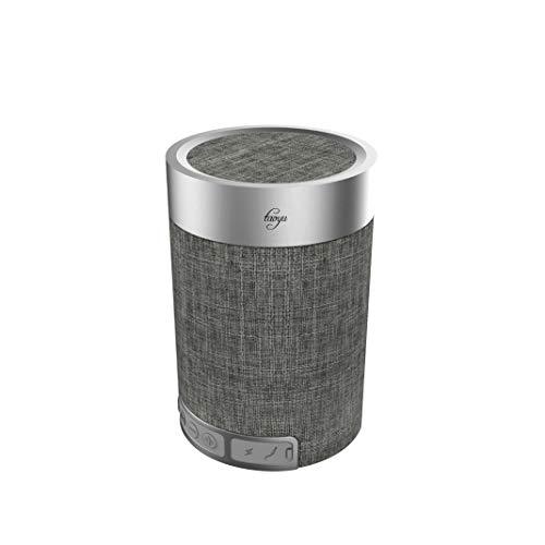 Taoyu Mobiler Wireless Bluetooth Lautsprecher Kabelloser Speaker mit 24 Stunden Spielzeit 20 Meter Bluetooth eingebautem Mikrofon V4.2 Lautsprecher 360° Surround Sound Reichweite und Starkem Bass