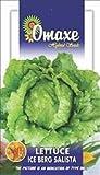 Best Lettuces - Omaxe Hybrid Seeds Lettuce Ice Berg Salista USA Review