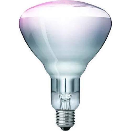 "Kerbl 22316 Hartglaslampe \""Philips\"", 250 W / 240 V, klar"