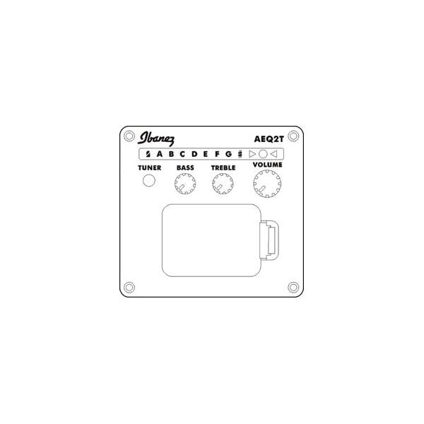 Ibanez PF17ECE LG Chitarra acustica amplificata opaca Low Gloss