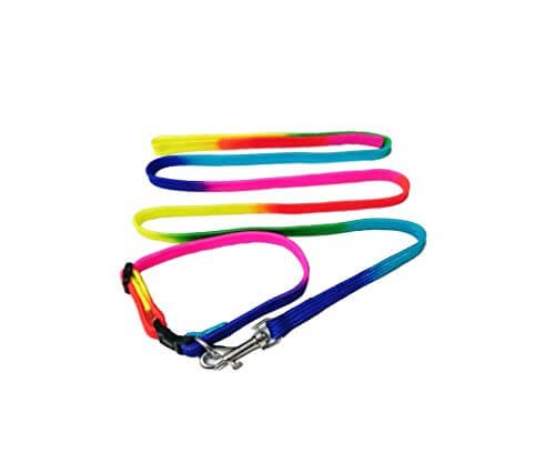 Super Dog Puppy and Small Breed Dog Collar and Leash Set