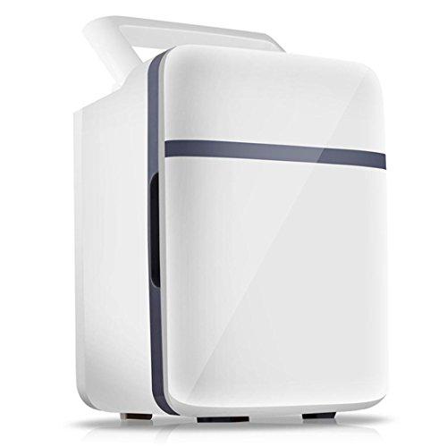 Mini-Kühlschrank 10L für Auto SUV Home, 220V / 12V Kühler / Wärmer, für Outdoor Reisen Camping Urlaub Urlaub Essen Trinken Frühstück Milch Kühlung Warming (Frühstück-kühler)