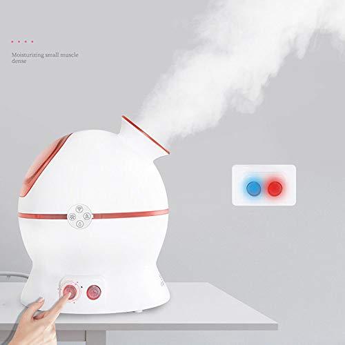 Facial Steamer, ein heißes und kaltes Funktionsspray, lindert die Poren der Akne und verdickt die Haut, um eine seidige Haut zu erzeugen