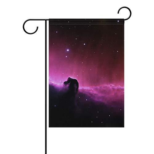 Garten-Flagge, Universum Weltraum, Aurora, 30,5 x 45,7 cm, Banner, doppelseitig, für Rasen, Hof, Außendekoration, Polyester, Image 670, 28x40(in)