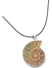 Madagascar Ammonite caracola mar caracol bocina fósiles colgante plata