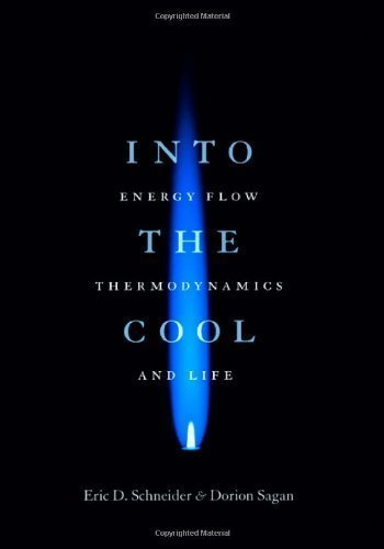 Into the Cool: Energy Flow, Thermodynamics, and Life 1st edition by Schneider, Eric D., Sagan, Dorion (2005) Hardcover