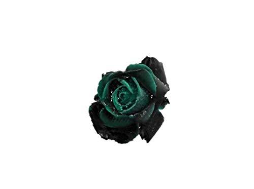 KINGDUO 100 Pcs Noir Rose Graines Roseraie Vert Foncé Bonsai Plantes Vivaces Fleurs Graines-4