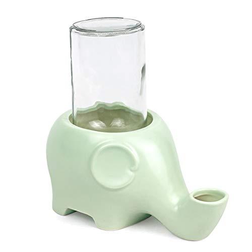 WEATLY Haustier-Wasserspender-Haustier-Katze und Hund, die Brunnen Trinken Trinkwasser-Schüssel Anti-overturning nasses Kinn-keramische Schüssel (Color : Green)
