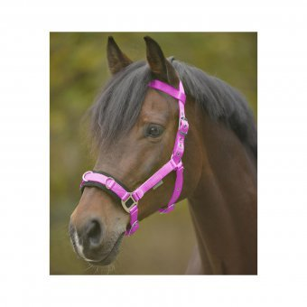 WALDHAUSEN Kappzaum Economic, Nylon, Warmblut, pink