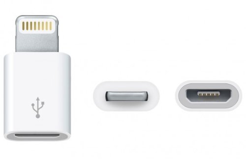 Easyplace Adaptador de Conector Lightning a Micro USB para iPhone 5/iP