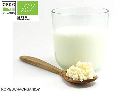 Kombuchaorganic® Bio-Milch Kefir Getreide tibetische Pilze von Bio-Qualität