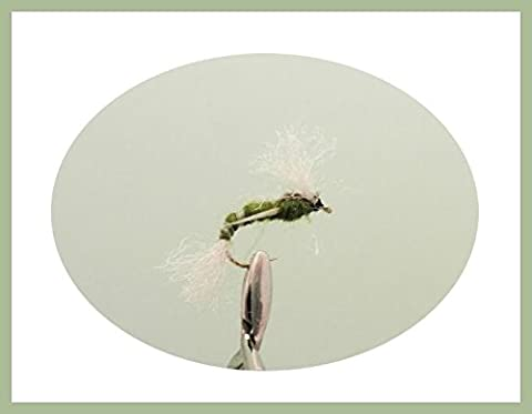 12 pack of Poly Ribbed Buzzer - Olive - Fishing Flies. Mixed sizes 10-16