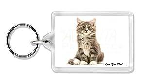 Flauschige Kätzchen 'Love You Dad' Foto Schlüsselbund TierstrumpffüllerGeschenk