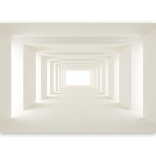 *murando – Fototapete 500×280 cm – Vlies Tapete -Moderne Wanddeko – Design Tapete – Tunnel Abstrakt 3D a-B-0036-a-b*