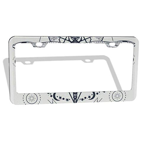 Sox Tattoo (FunnyCustom License Plate Frame Dragonfly Tattoo Sketch Amazing Aluminum License Plate Set Metal Tag Holder 12 x 6 Inch 2 Packs)