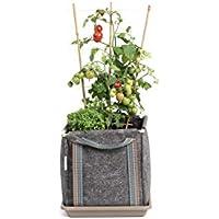 Saco Tomatero Mh 30x30x30 cm cm + Manual Agricultura Urbana