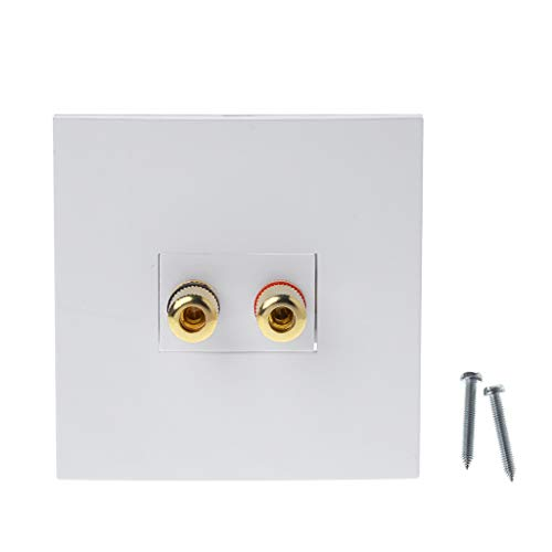 Preisvergleich Produktbild Wellyou Audio Panel Terminals 2 Binding Post Left Right Channels Lautsprecheranschluss Steckdose Bananenbuchse