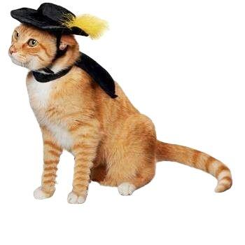 ollypet Katze Halloween-Kostüm für Kleine Hunde Pet Outfit Süße Fleece Mütze und Kragen Party Event Apparel Lustigen Kleidung Zubehör