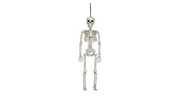 Poseable Large Size Human Skeleton Halloween Decoration Party Prop 40*12CM