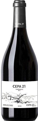 Un vino con raíces ancladas en la más auténtica tradición vitivinícola de la ribera del duero pero con una vocación innovadora, cepa21 ha sido el vino elegido por la tercera generación de la familia moro para representar su pasión por elaborar un vin...