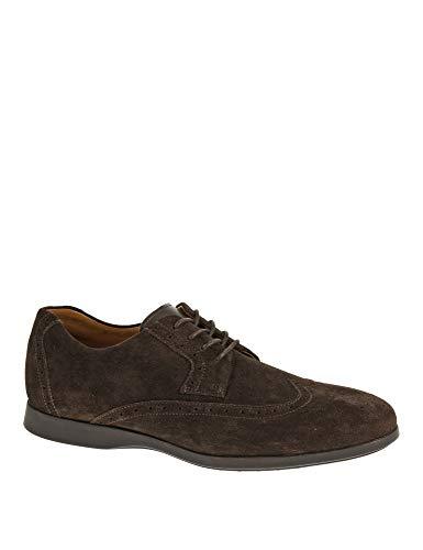 Sebago Men's Teague Wing Tip Oxford Shoes Brown in