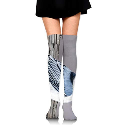 Bidetu Kleiber Frauen Plus Size Oberschenkel hohe Strümpfe, über das Knie Schlauch Socken lange Sport Strumpfhose Beinlinge (Kostüm Oberschenkel Hohe Schlauch)