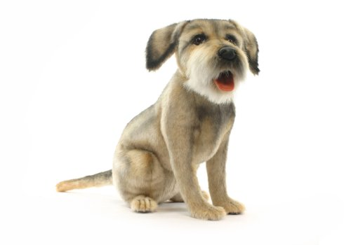 Border terrier No.4568 (japan import)