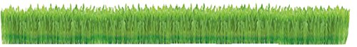 GimCat Hydro-Grass - Fresh cat grass harvested from certified open fields, ready in only 5 to 8 days - 1 bowl (1 x 150 g… 2