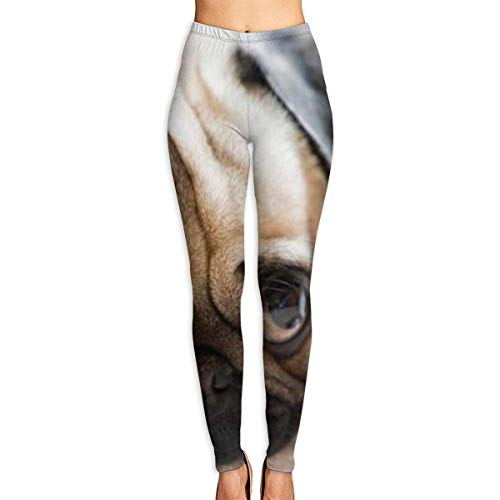 Sport Damen Leggings Yoga Pants Cute Puppy with Big Eyes Printed Yoga Pants for Women Running Workout Yoga Capris Pants Leggings Graphic Running Clothing Autumn Trousers -