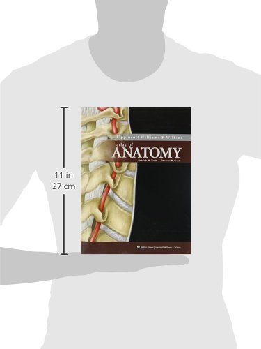 Zoom IMG-2 clinically oriented anatomy 6th ed