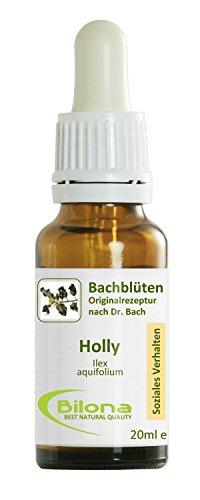 Joy Bachblüten, Essenz Nr. 15: Holly; 20ml Stockbottle