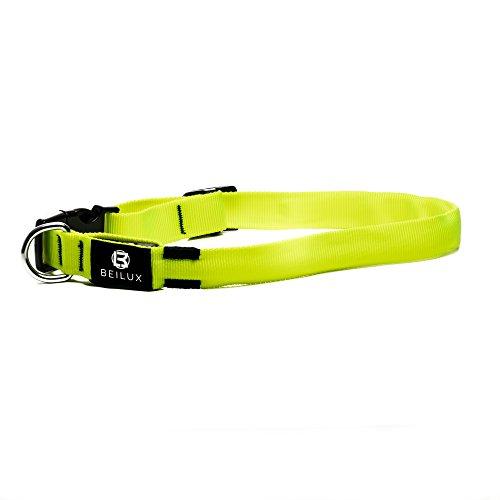 Leuchtendes aufladbares USB Hunde Halsband: Hohe Sichtbarkeit durch helle LED - In 4 verschiedenen Größen - Modus Blinken und Strahlen - Aus reflektierendem Nylon mit Metallring - Sicherheit Nachts (Hohe Sichtbarkeit-fall)
