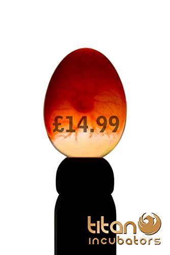 high-intensity-egg-candler-for-all-egg-types-mains-powered-uk-designed-and-supplied