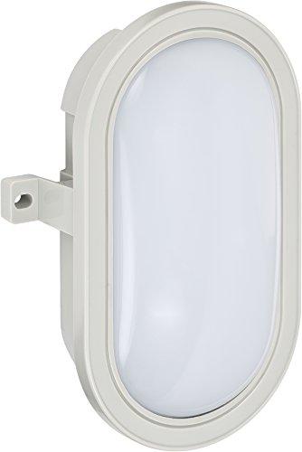 Brennenstuhl LED Ovalleuchte/Kellerleuchte (für außen und innen, IP44, 460 Lumen, Schutzklasse II, ideal für Decken- und Wandmontage) grau