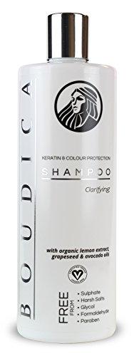 Boudica Klärung Sulfatfreies Shampoo - 500 ml