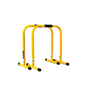 Perform Better Lebert Equalizer – Mobile Dip Bars für Bodyweight- + Ganzkörper-Workout & Functional Training