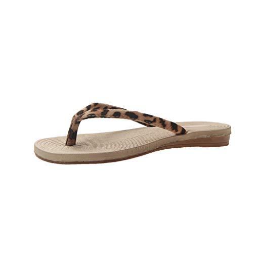 Quaan Flipflops für Damen Mode Wilde, kühle Hausschuhe Flache Zehenbeiläufige StrandHausschuhe