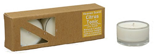 3x Beduftete Natural Citrus Tonic Plant Wax Tealights in recycled glass covers...
