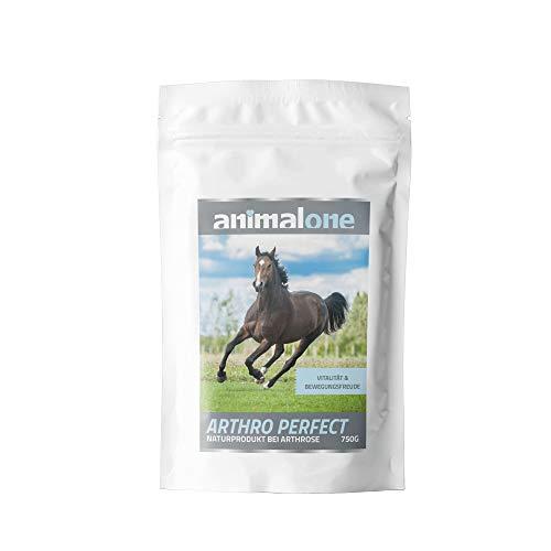 animalone - ARTHRO Perfect 750 g - für Pferde - bei Athrose - Aufbau der Gelenkschmiere - entzündungshemmend - kann Schadstoffe aus dem Organismus spülen - Immunsystem -