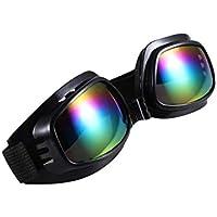BESPORTBLE Gafas de Snowboard de Esquí Protección UV Gafas de Nieve Antiniebla Gafas de Deporte Gafas Protectoras de Seguridad para Hombres Mujeres Jóvenes