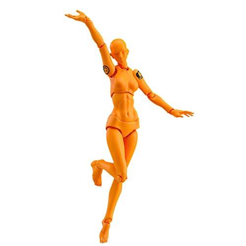 TianranRT Figuren Für Künstler Aktion Figur Modell Mensch Schaufensterpuppe Mann Frau Kits (F,F)