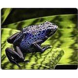 luxlady-alfombrilla-para-raton-id-42958098-blue-poison-dart-frog-dendrobates-azureus-a-beautiful-tro
