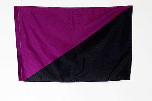 Bandera Anarquismo feminista 90 x 60 cm para un palo
